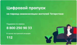 По вопросам электронного пропуска в Татарстане